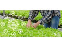 空间复合利用 台达自动化助力种菜新成就
