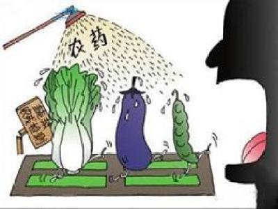食品中农药残留标准 的基本情况