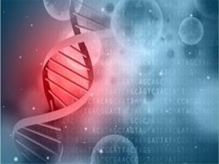 纳米测序可研究未分裂细胞基因突变新方法有助研究癌症和衰老